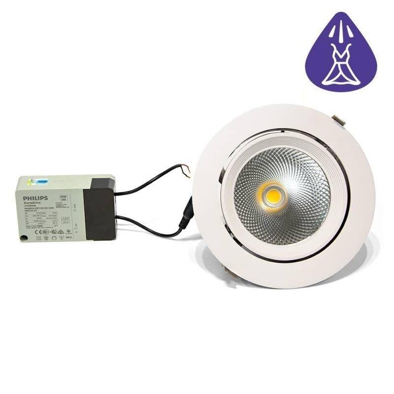 Ruban LED 12V DC SMD 3528 24W IP20