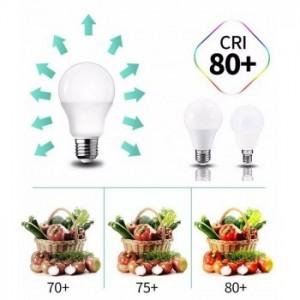 Ampoule LED E27 14W A65