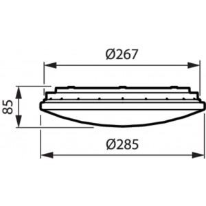 Rouleau 10 mt. Tuyau LED Blanc Froid 230V IP65