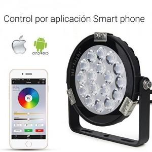 Projecteur LED RGB + CCT 9W Contrôle RF et WIFI IP65
