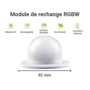 Module de remplacement pour boule lumineuse
