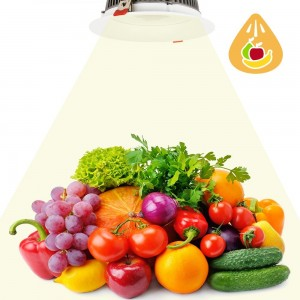 Spot encastrable LED 30W spécial fruits et légumes