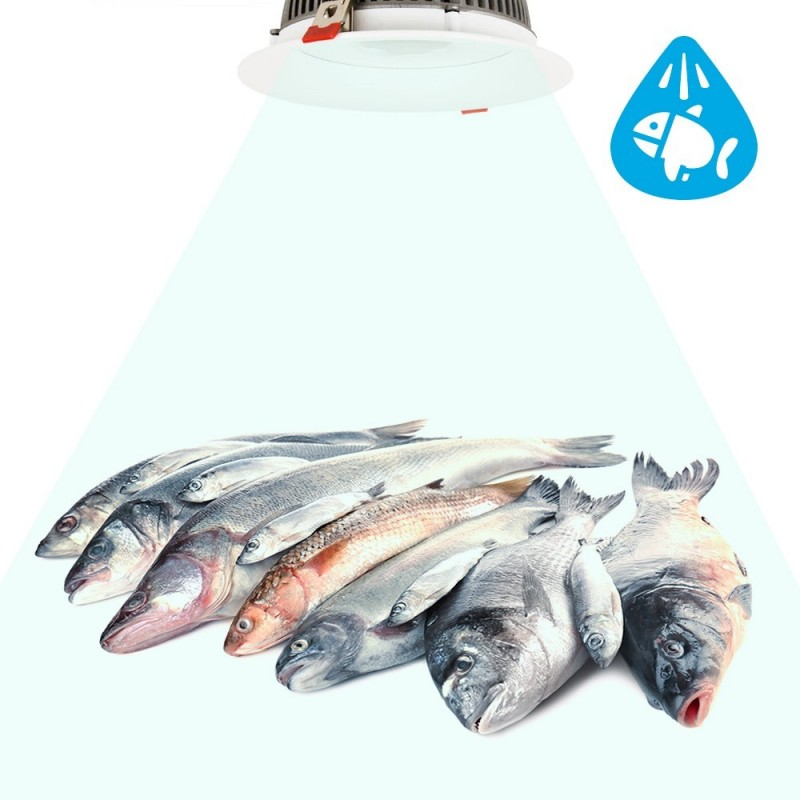 Spot LED encastrable 30W spécial poissonnerie