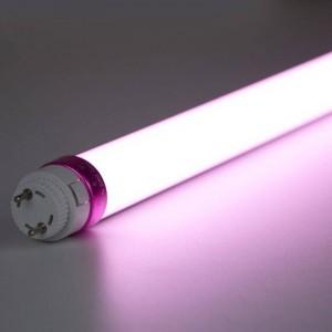Tube LED T8 10W 600mm spécial Boucherie