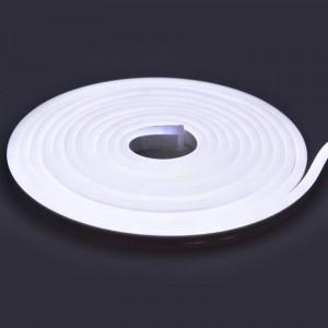 NEON LED Flexible 24V IP65 5 Mètres