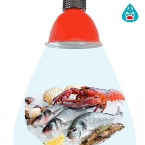 Cloche LED 30W spécial poissons et fruits de mer (Bleu)