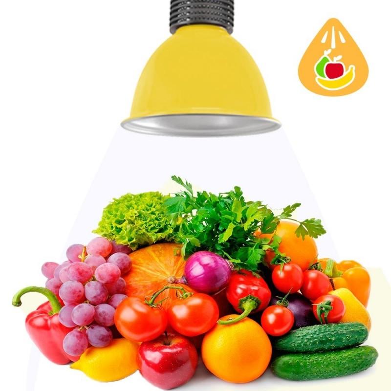 Cloche LED 30W spécial fruits et légumes