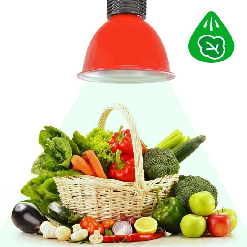 Cloche LED 30W spécial légumes verts (Rouge)