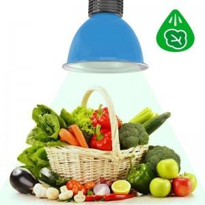 Cloche LED 30W spécial légumes verts