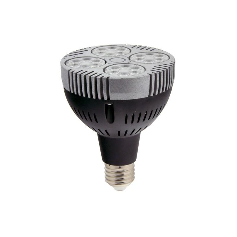 Ampoule LED E27 35W PAR30
