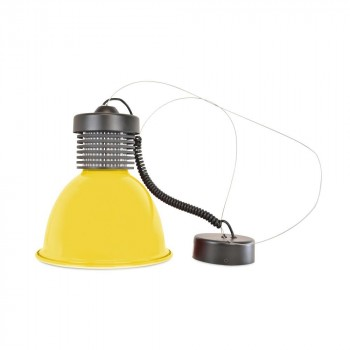 Dichroïque LED MR16 5W 12V