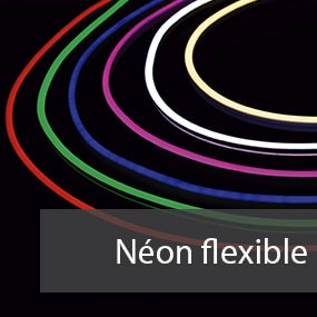 neon flexible LED