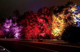 éclairage extérieur projecteur LED rgb