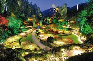 Décoration jardin ampoule extérieur
